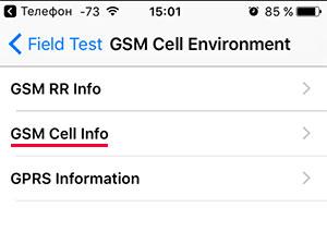 Меню GSMCellEnvironment в iPhone
