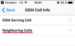 Меню GSM Cell Info в iPhone